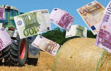 immagine da agricoltura24.it